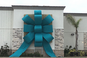 Giant Building Bow