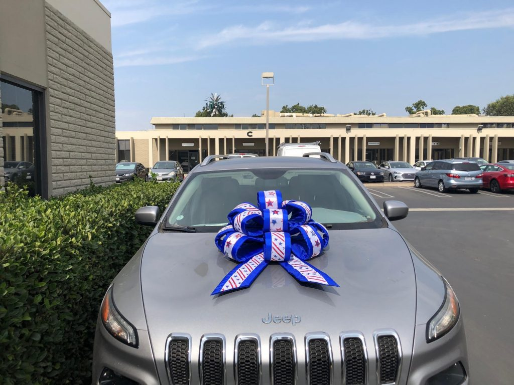 Blue & White Car Bow